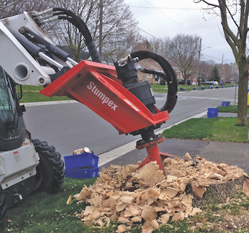 Fecon Stumpex stump grinder
