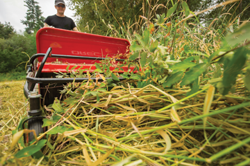 Rental Solution: Tackle tall brush - Pro Contractor Rentals
